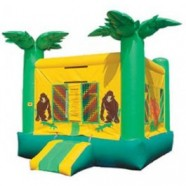 PARADISE BOUNCE HOUSE rental